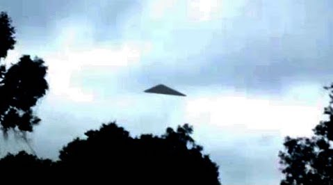 Large Black Triangle UFO at Treetop Level